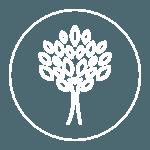Nova-Press-Icons-green-practices